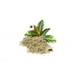 Пальмовая пыльца в порошке, 1 кг